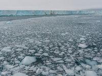 We komen met regelmaat ijsvelden tegen. Ons schip geraakt er zonder problemen doorheen. © David 'Billy' Herman