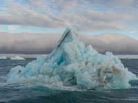 Het tipje van de ijsberg! © David 'Billy' Herman
