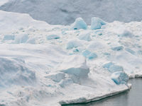 Zelfs een bultrug wordt herschapen tot maar een klein diertje in combinatie met deze enorme ijsbergen. © Bart Heirweg