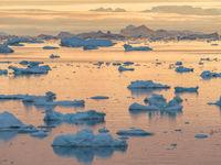 Het rustige water van de Noordelijke IJszee kleurt goudgeel tijdens de ondergaande zon. © Bart Heirweg