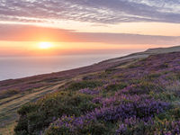 Zonsopgang in Countisbury Hill. © Sandy Spaenhoven