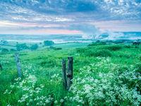 De bloemrijke hooilanden van de streek doen denken aan Polen of andere streken in Oost-Europa, en zijn bijzonder rijk aan soorten. © Billy Herman