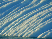 Het smeltwater sleet kleine kreekjes in deze ijsberg. © Yves Adams