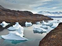 Een fjord met daarin een verzameling ijsbergen van diverse grootte. © Yves Adams