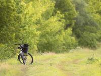 Het rustige leven op het Hongaarse platteland. © Rudi Debruyne