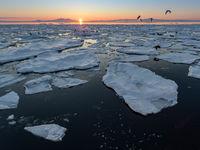 Ice drift in the Kunashirskiy Strait near Hokkaido, Japan