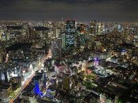 Tokyo is één van de meest moderne steden van Azië. © Jeffrey Van Daele