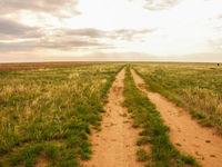 Een weg loopt door de ongerepte graslanden. © Machiel Valkenburg