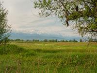 Een vruchtbare vallei aan de voet van de Altai. © Machiel Valkenburg