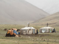 Sfeerbeeld van enkele yurten, mét schotelantenne! © Maarten Jacobs