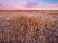 La nature immense et sauvage nous entoure © Billy Herman