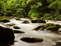 Lage sluiters en de rivier zorgen voor een mystiek resultaat. © Hans Debruyne