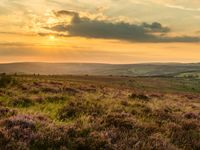Zonsondergang in Exmoor. © Hans Debruyne