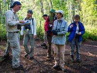 Op wandel in het bos onderzoeken we tal van plantjes en ander leven. © Billy Herman