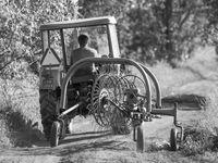 Photo en noir et blanc d'un agriculteur local