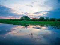 Een sfeerbeeld van de oevervegetatie tijdens een ondergaande zon. © Billy Herman