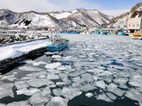 De haven van Rausu, met hopen drijfijs. © Yves Adams