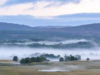 Het rustige Cairngnorms in Schotland. © Bart Heirweg