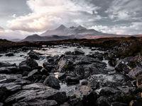 Contrast tussen donkere lava en purperen heide op de achtergrond. © Thierry Vanhuysse