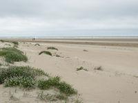 Het zandige strand doet sterk denken aan dat van onze Belgische kust, alleen met minder mensen! © Sandy Spaenhoven