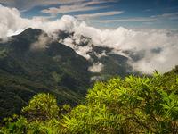 De wolken worden gevormd boven het regenwoud van Sri Lanka. © Billy Herman