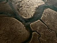 Prachtig detail van een riviervertakking.  © Sebastian Vervenne