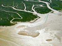 Een abstract beeld van een kustlijn bij laagtij. © Sebastian Vervenne