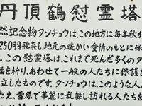 Het Japanse geschrift behoort tot een van de meest ingewikkelde. © Yves Adams