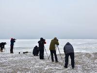 Sessie fotograferen van ijsberen. © Yves Adams