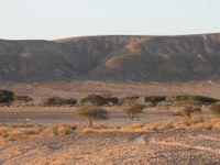 Une vue typique sur un petit wadi du sud d'Israël © Noé Terorde