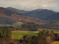 Een panorama van de Karpaten in het landelijke Polen. Een bewonderenswaardig landschap dat uitgestrekte bossen combineert met prachtige weilanden. © Karl Vanginderdeuren
