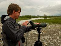 Digiscopie dans le delta du Chorokhi © Johannes Jansen