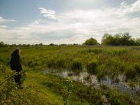 Dans le delta du Chorokhi © Johannes Jansen