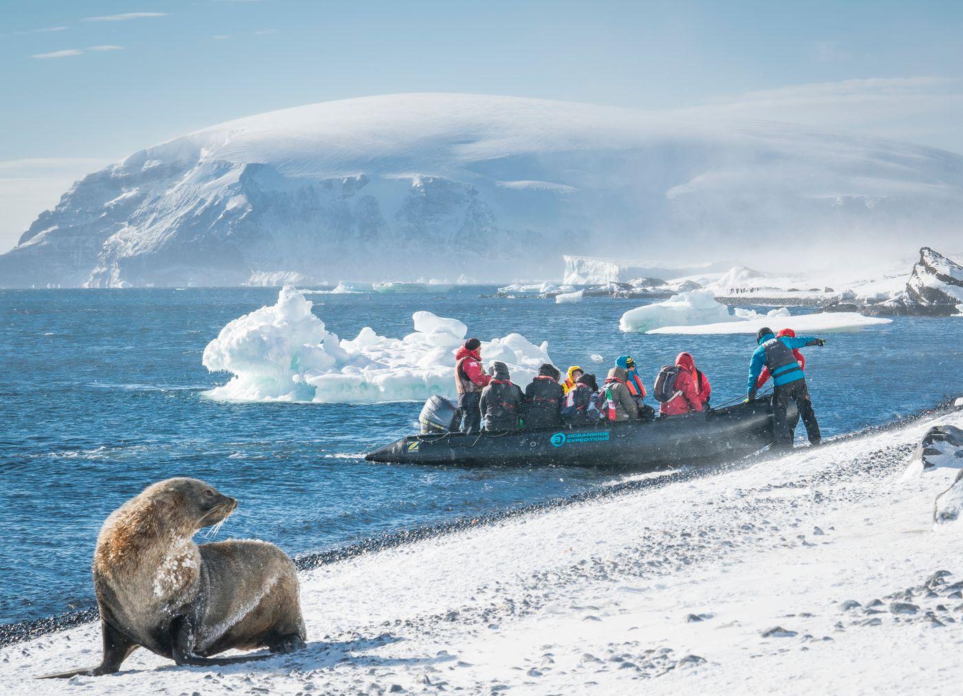 Brown Bluff met de zodiac op de voorgrond. © Dietmar Denger - Oceanwide Expeditions