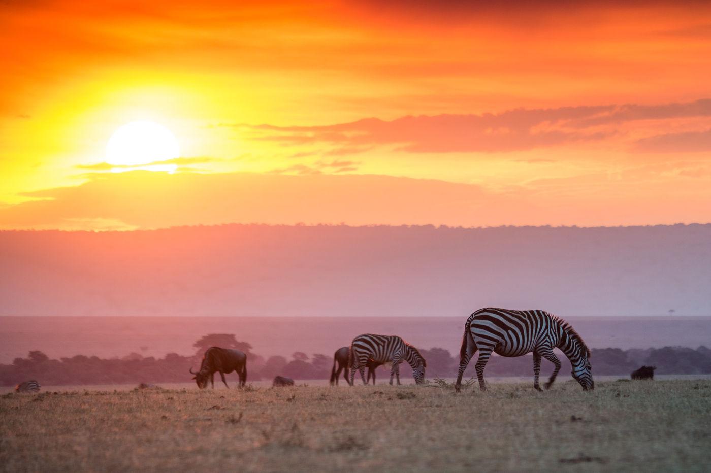 Een zonsondergang verveelt nooit in de Masai Mara. © Billy Herman