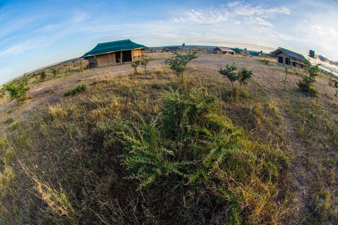 Een typisch tented camp midden in de natuur © Billy Herman
