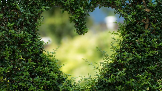 حديث يدل على محبة الرسول للانصار
