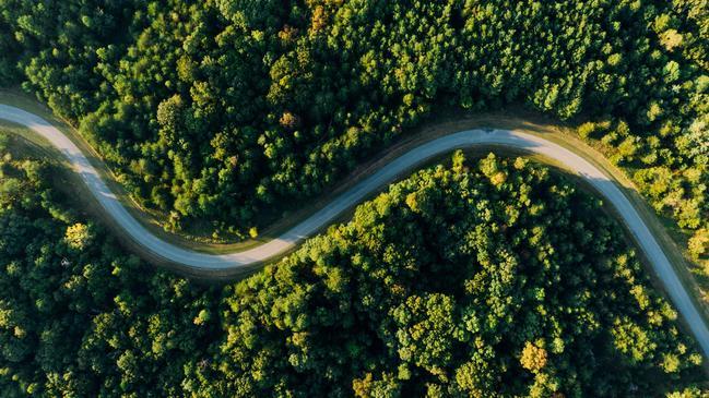 تاثير المناخ على النبات .. بحث عن تأثير المناخ - كراسة