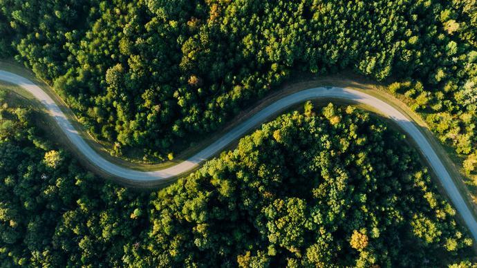 تاثير المناخ على النبات .. بحث عن تأثير المناخ