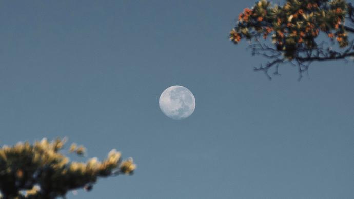 من هو شبيه القمر .. وأهم المعلومات عن شبيه القمر