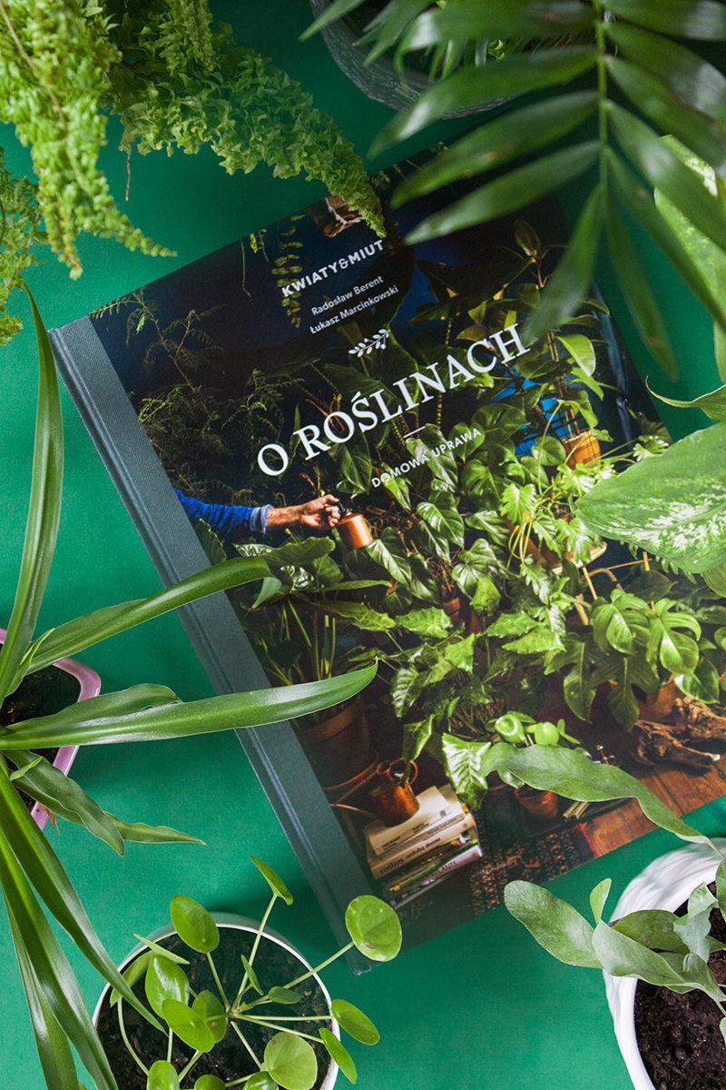O roślinach przy roślinach kompozycja recenzja książki