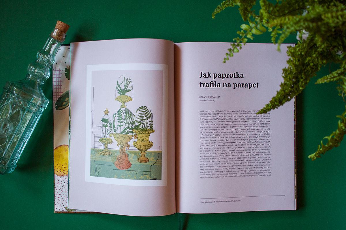 recenzja książki O roślinach fragment o paprotkach