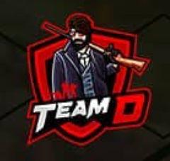 Team D Esports
