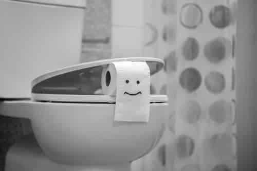 Choosing a Toilet