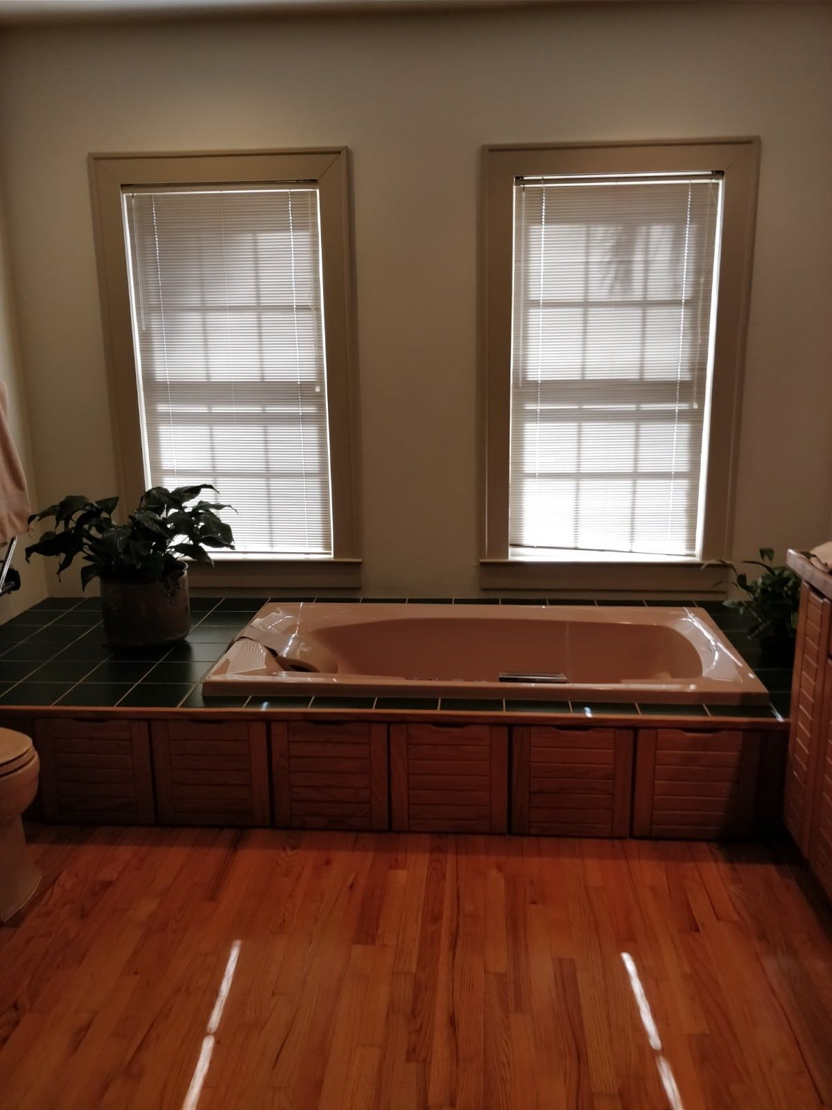 Master Bathroom Remodel Tallahassee