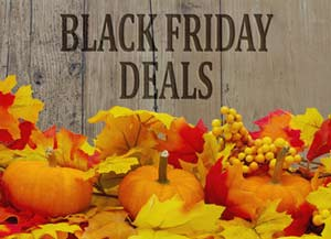 black fiday deals sign with pumpkins - Cyber Monday Mattress Deals