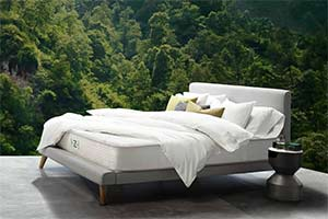 the Zenhaven mattress in the jungle
