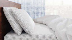 The Amerisleep Comfort Pillow