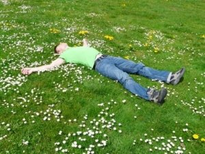 guy sleeping in a field with daisies