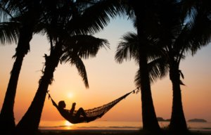 A hammock between two palm trees by the ocean